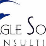 Eagle Soars Consulting gets an updated look and mission for serving business owners